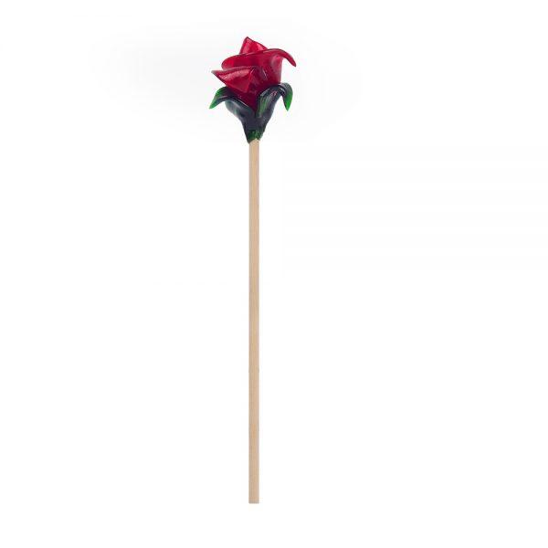 rosa-sant-jordi2